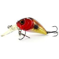 Soft bait frog